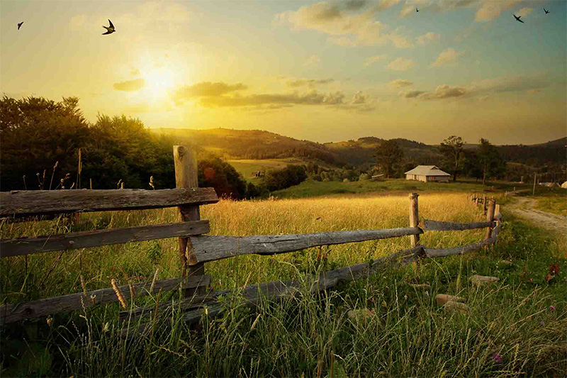 farm insurance pa