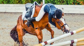 Riding Instructors Insurance